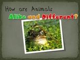 Science Vertebrates and Invertebrates