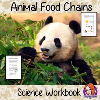 Science - Animals, Food Chains, Workbook