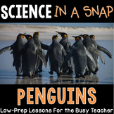 Science in a Snap: All About Penguins {Interactive PowerPo