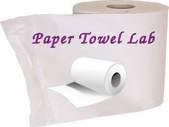 Scientific Method Inquiry Lab Paper Towels