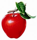 Scientific Method Lesson: Easy as Apple Pie