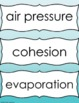 Scientific Method and Bubbles-  Surface Tension, Air Press