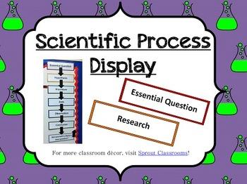 Scientific Process Display