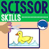Scissor Skills Fine Motor Practice
