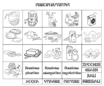 Scopriamo i principi nutritivi e le loro funzioni