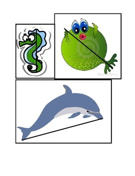 Sea Creature Measurement