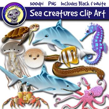 Sea Creatures Ecosystem Clipart Set