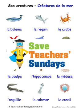 Sea Creatures in French Worksheets, Games, Activities and