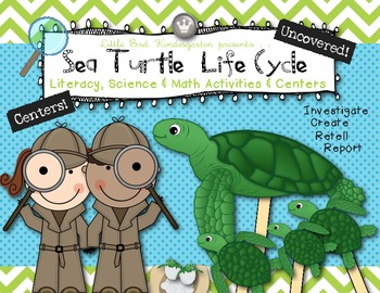 Sea Turtle Life Cycle Literacy, Science & Math Activities