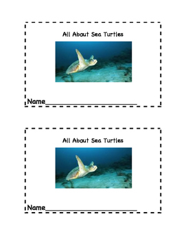 Sea Turtle Reader