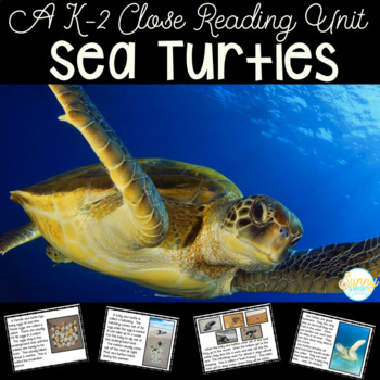 Sea Turtles Life Cycle & More- Complete Nonfiction Resourc