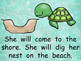 Sea Turtles- Nonfiction Shared Reading- Level C Kindergart