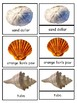 Seashells Montessori 3-part cards and silhouette match--Sa