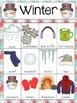 Seasons Vocabulary Card Bundle