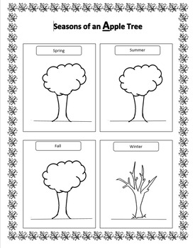 Seasons of an Apple Tree