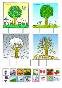 Seasons worksheet