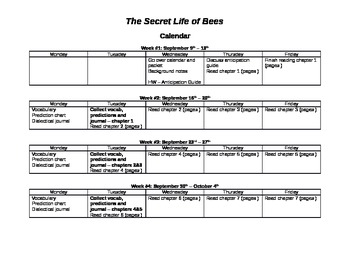 Secret Life of Bees Unit Plan