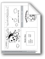 Seed Surprise (Word Family Reader)