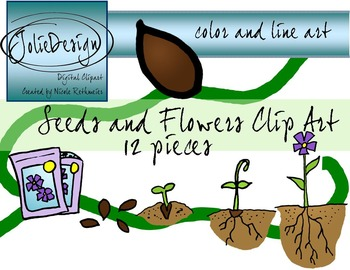 Seeds And Flowers Science Clip Art - 12 pc set