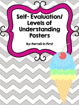 Self-Evaluation/ Levels of Understanding Posters
