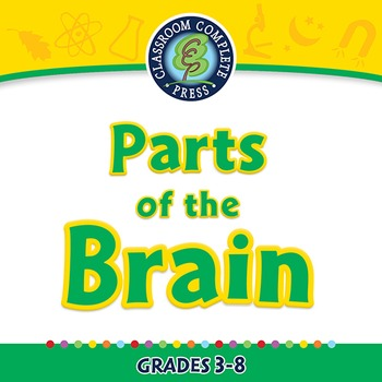Senses,Nervous & Respiratory Systems: Parts of the Brain -