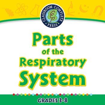 Senses,Nervous & Respiratory Systems: Parts of the Respira