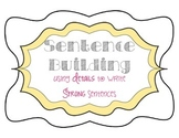 Sentence Building and Using Details to Write Stronger Sentences