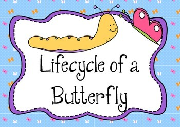 Sequencing: Life Cycle of a Butterfly - The Very Hungry Ca