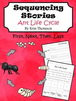 Sequencing Story ~ Ant Life Cycle