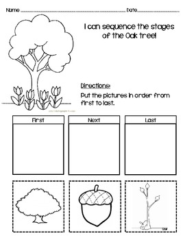 Sequencing Worksheet for Oak Tree!