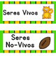 Seres Vivos y No Vivos Sort It Out:  Spanish Living and No