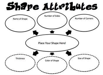 Shape Attributes Web