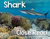 Shark Close Read