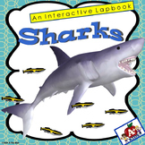 Sharks An Interactive Lapbook