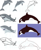 Sharks, Dolphins, Whales Clipart