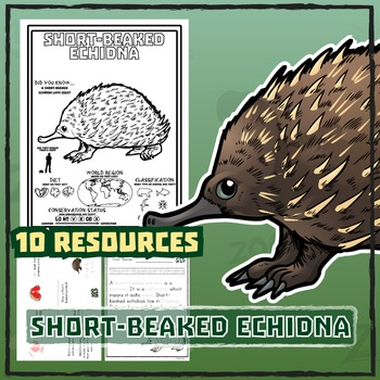 Short-Beaked Echidna -- 10 Resources -- Coloring Pages, Re