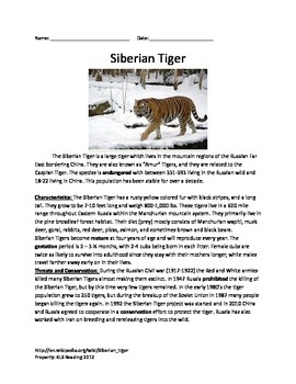 Siberian Tiger - Review Article Lesson Facts Information Q
