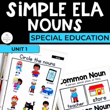 Simple ELA: Nouns