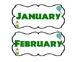 Simple Jungle Themed Birthday Bulletin Board Set