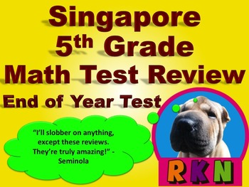 Singapore 5th Grade End of Year Math Test Review (19 pages)