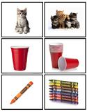 Singular Plural Nouns worksheets -s,  -es,  -ies