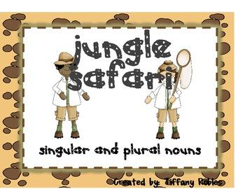 Singular and Plural Noun Safari
