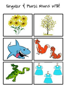 Singular and Plural Noun Write the Room!