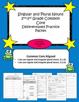Singular and Plural Nouns 2nd - 3rd Grade Common Core Diff