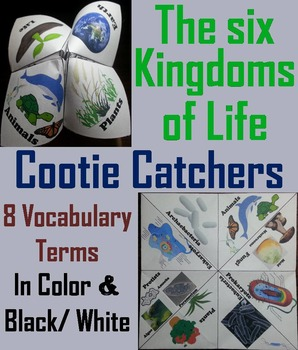The Six Kingdoms of Life Activity: Plants, Animals, Bacter