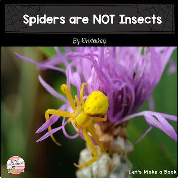 Spiders Let's Make a Book Science and Literacy Pack