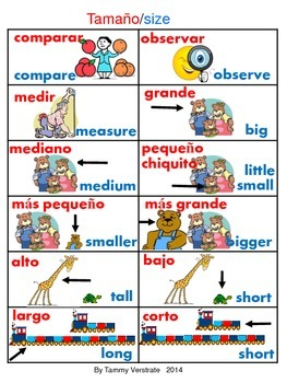 Sizes Bilingual Vocabulary