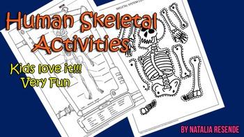 Skeletal Activies - Skeletal Cut and Paste and Human Bones