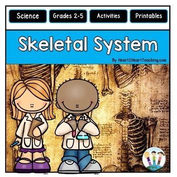 The Human Body - Skeletal System - Our Bones, Teeth, Joint