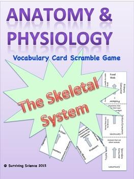 Skeletal System Anatomy/ Medical Terminology Vocabulary Sc